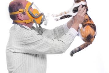 allergie-huisdieren-klachten-en-behandeling
