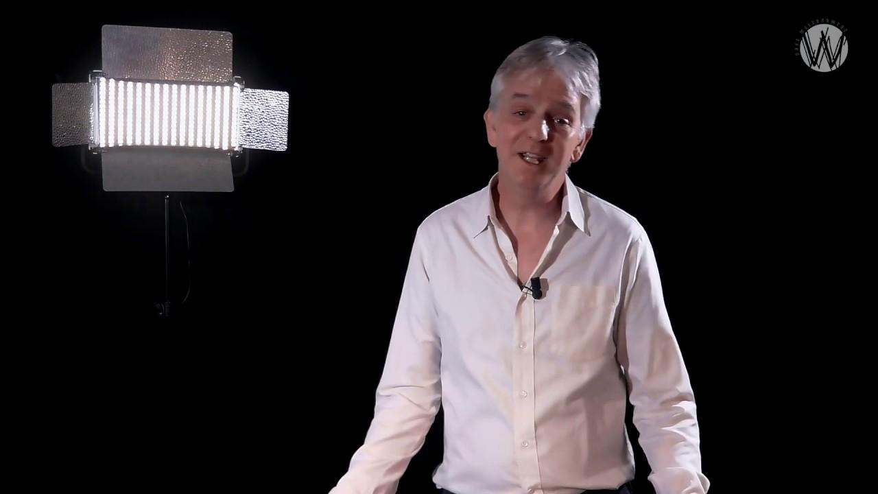De uitlevering van Julian Assange aan de Verenigde Staten - Rico Brouwer